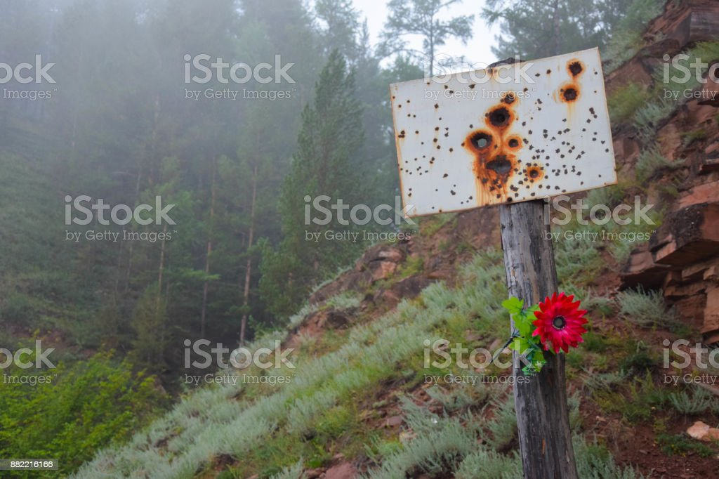 Siberian Forest view. Creepy Sign in Fog. Summer stock photo