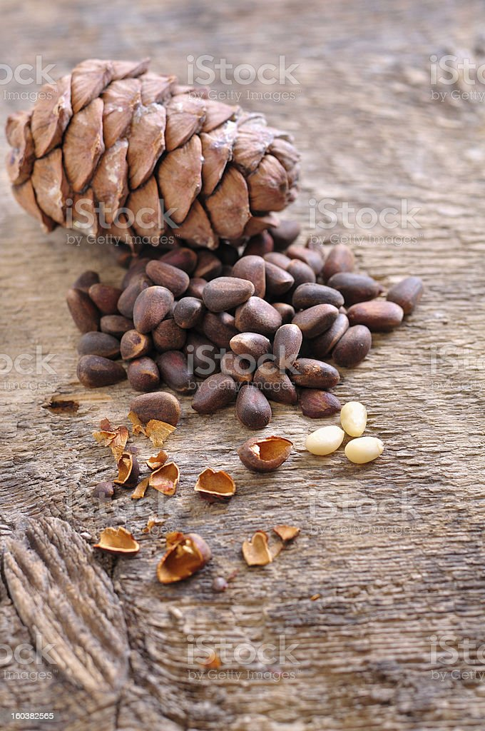 Siberian pine nuts royalty-free stock photo