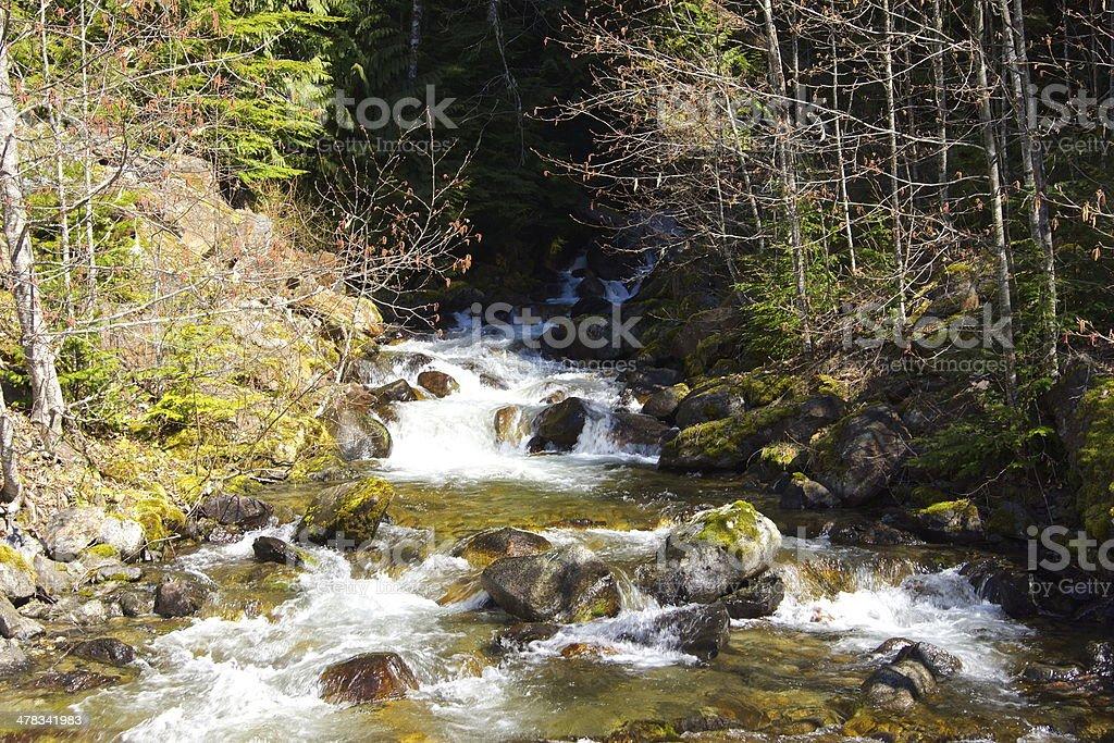 Sibley Creek royalty-free stock photo