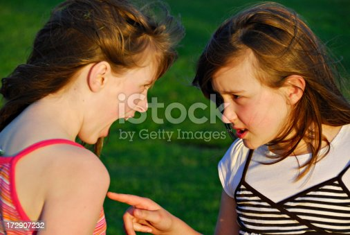 969532194 istock photo Sibling Rivalry - Accusation 172907232