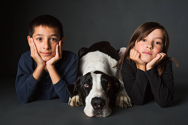 Siblings and dog portrait stock photo