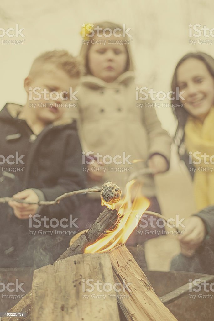 Siblings Enjoying Camp Fire royalty-free stock photo