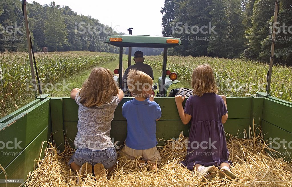 Siblings go for a hay ride stock photo