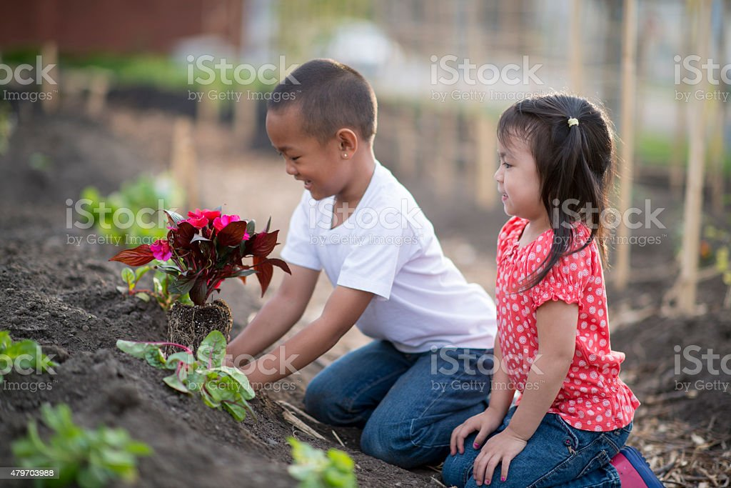 Siblings Learning to Garden stock photo
