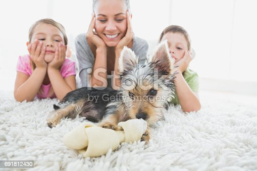 istock Siblings lying on rug looking at their yorkshire terrier with mother 691812430