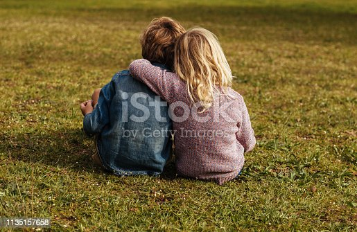 Rear shot of siblings sitting on the grass. Little girl sitting with her brother putting her arm on his shoulder at park.