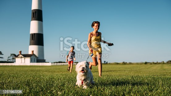 Siblings running with a Maltese Dog