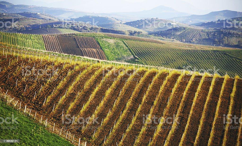 sicilian landscape royalty-free stock photo