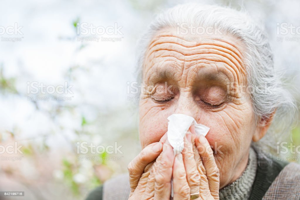 Sick elderly woman blowing her nose stock photo