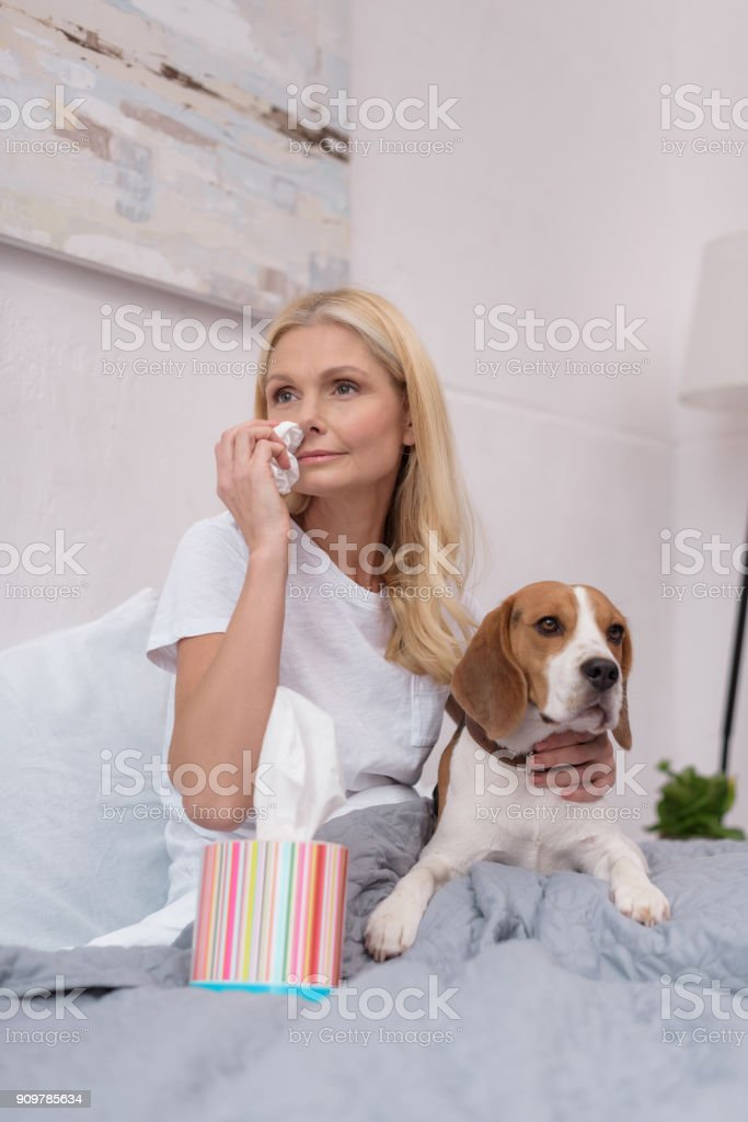 sick woman with dog at home stock photo