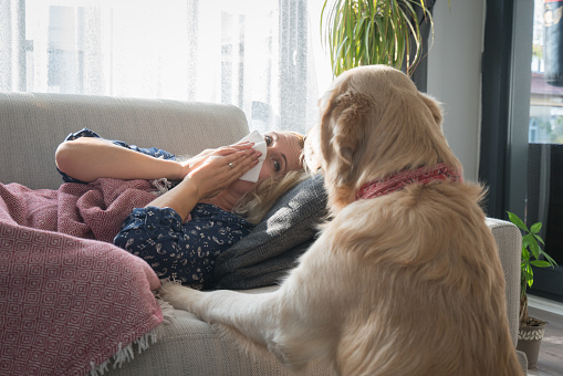 Sick woman with her dog lying at home on the sofa with a cold, she is covering with a blanket and blowing her nose.