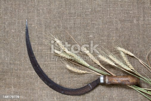 Sickle and wheat on canvas background