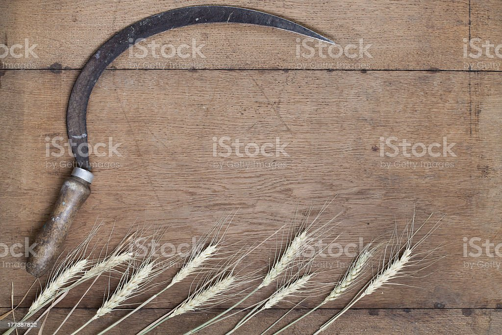 Sickle and wheat on wood stock photo