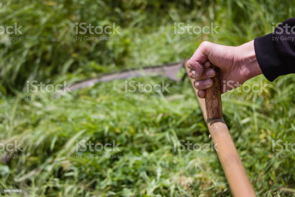 Sickle stock photo