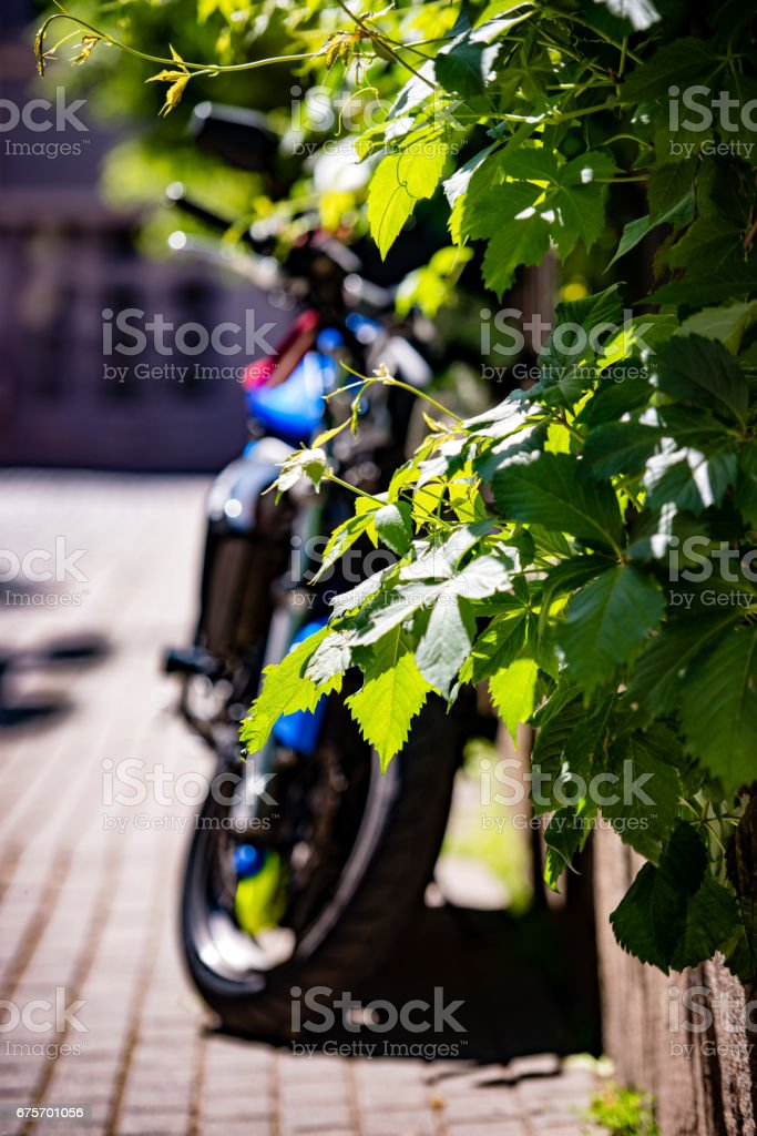 Side of the street at the door of a parked bike. A sunny day in the streets. royalty-free stock photo