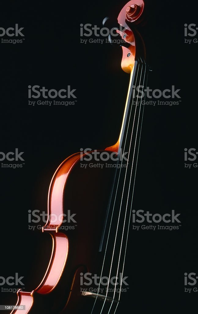 Side of violin with the rest in black shadows royalty-free stock photo