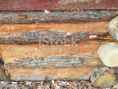 side of wood cabin with logs and adobe or clay or mud