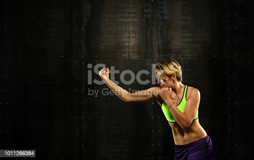 497607484 istock photo Side profile view of young athletic women boxing 1011266384