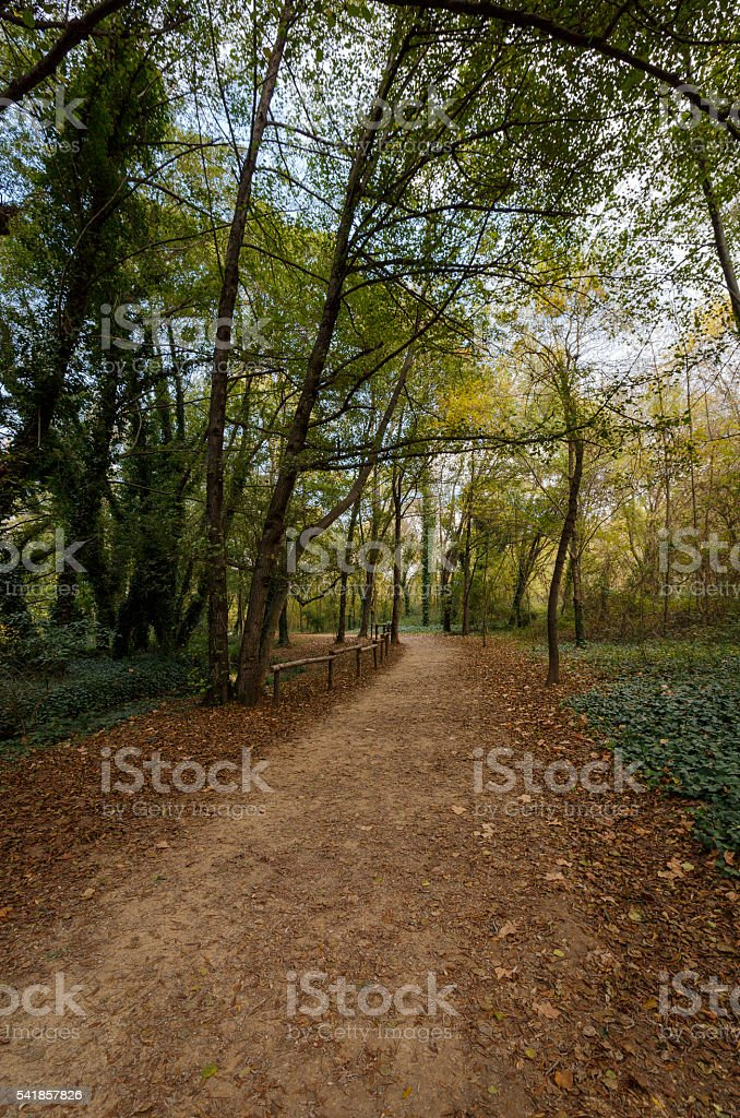 side roads to the lake in Banyoles,  Spain stock photo