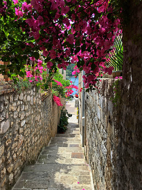 Side street in the Cavtat Old Town with bougainvillea arch ストックフォト