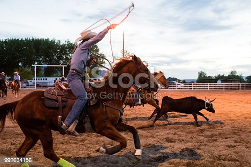 Side view full frame action shot cowgirl steer roping practice on a ranch.