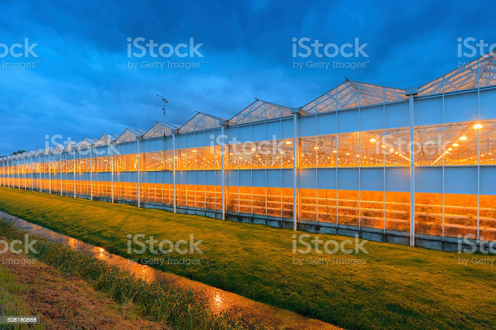 side view of an agricultural greenhouse stock photo