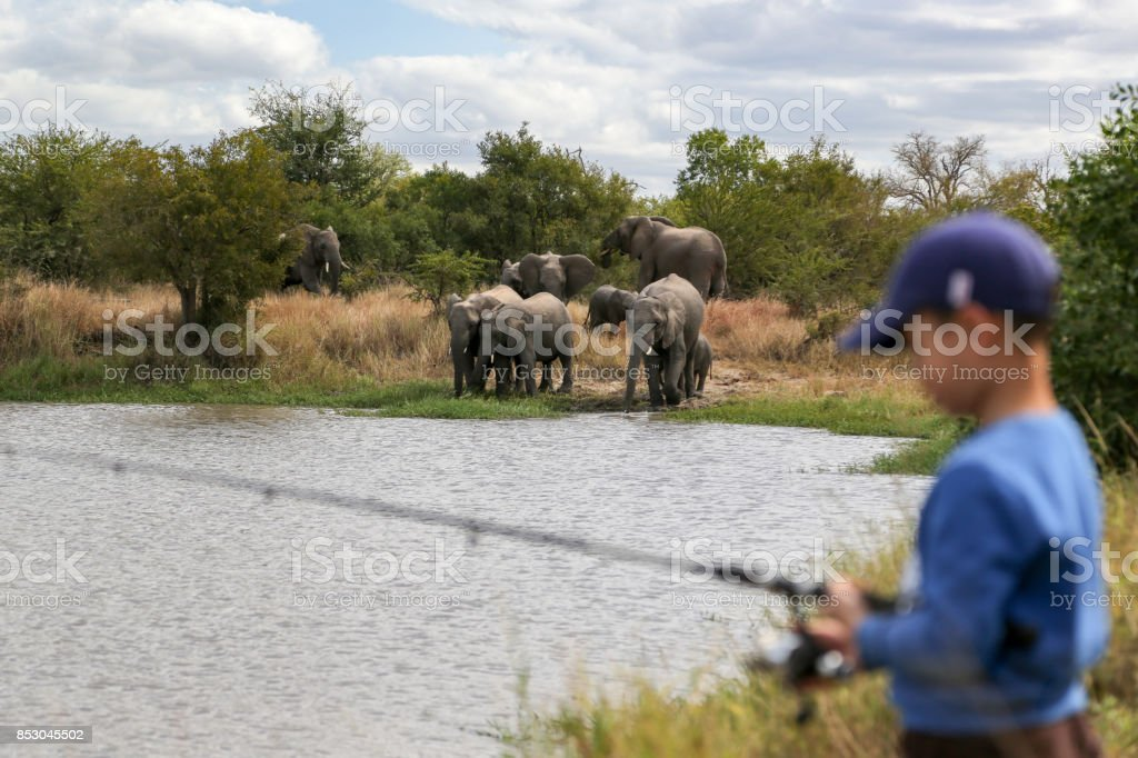 side view of freshwater fishing in Kruger National park, South Africa stock photo