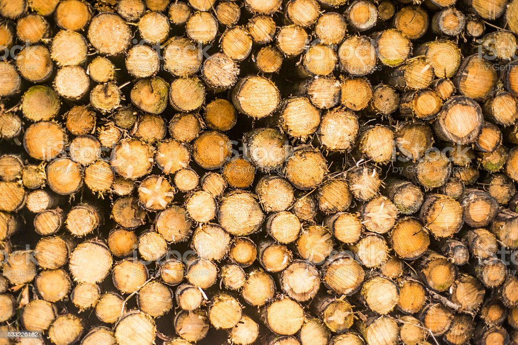 side view of logs stacked up royalty-free stock photo