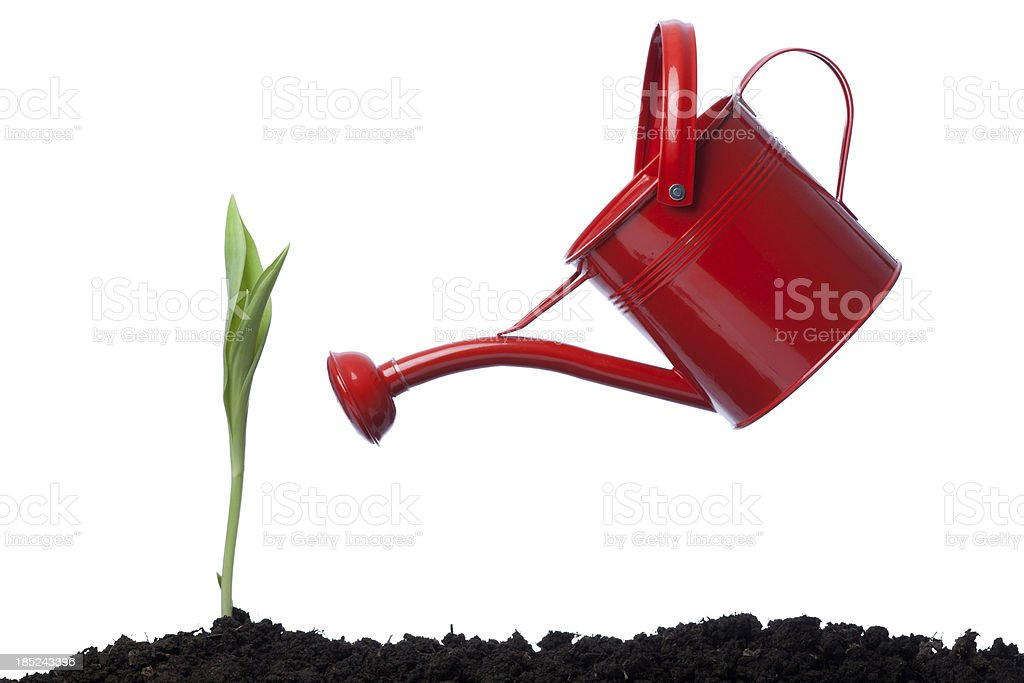 Side View Of red Watering Can Leaning On Green Plant stock photo