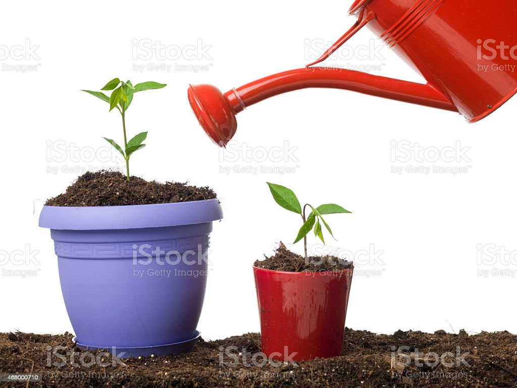 side view of red watering can leaning on plant pots stock photo