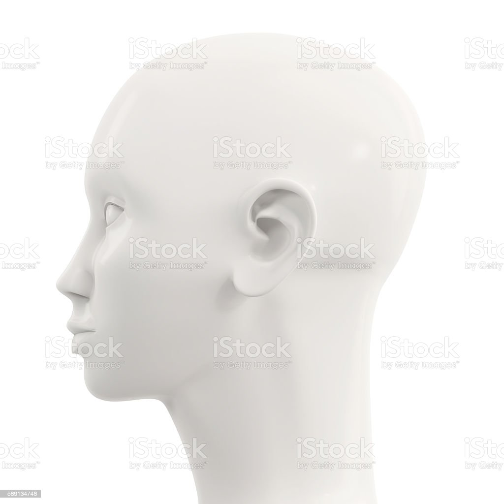 side view of white female mannequin head stock photo
