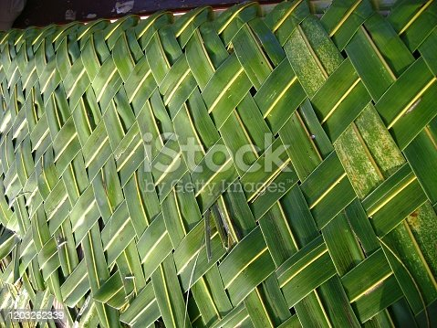 istock Side view of woven fresh coconut leaves 1203262339
