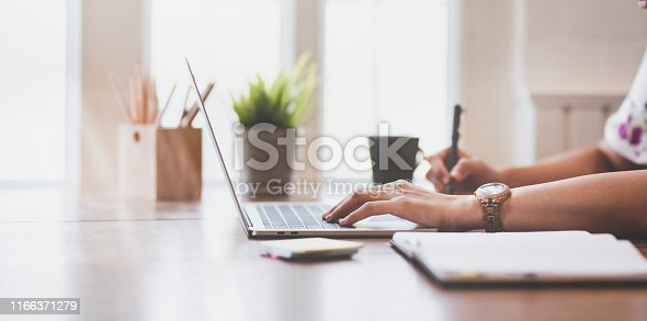 Side view of young businesswoman working on her project with laptop computer