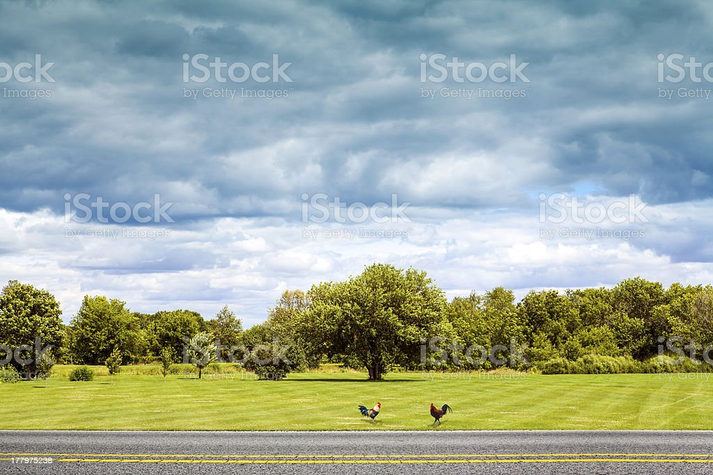 Side View on Countryside Road With Dark Rainy Sky royalty-free stock photo