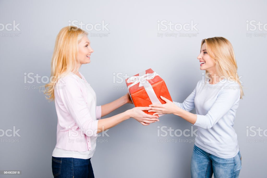 Side view portrait of good lovely attractive daughter congratulate her stylish mom, giving big gist case in red package with white bow isolated on grey background rest relax leisure concept royalty-free stock photo