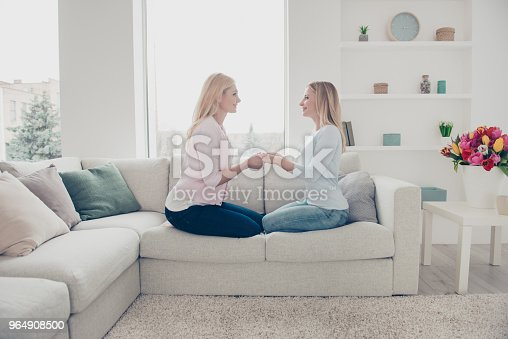 Side View Portrait Of Lovely Cute Charming Trendy Stylish Family With One Parent Grandma Sharing Experience Sitting In Modern White Living Room Celebrating Mothers Day Stock Photo & More Pictures of Adult