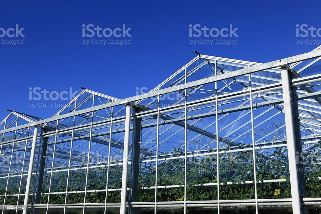 sideview of an agricultural greenhouse stock photo