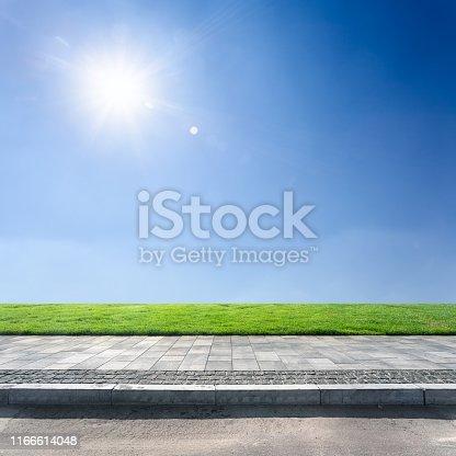 scene in sunny day