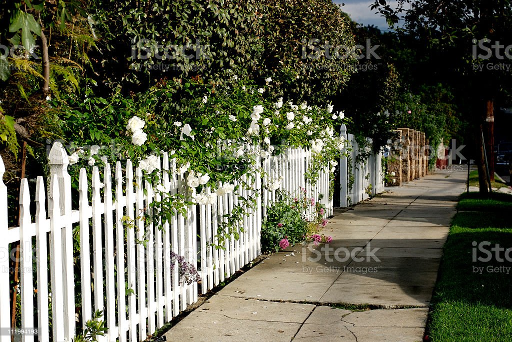 Sidewalk and Fence royalty-free stock photo