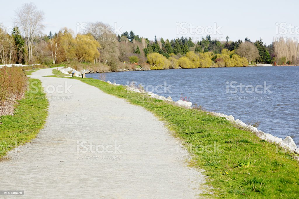 Sidewalk down a vibrant green grassy field. stock photo