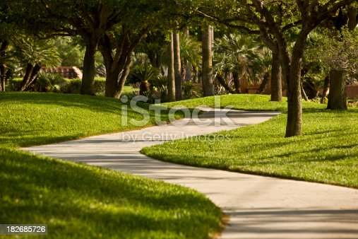 A sunny morning on a exclusive american suburban sidewalk