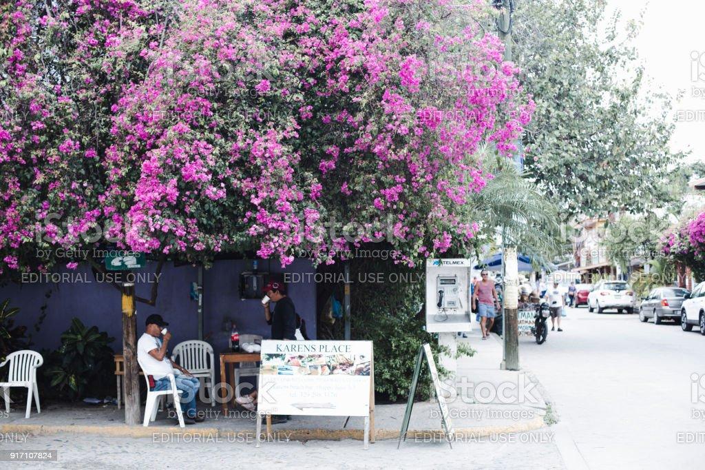 Restaurant De Trottoir Et Un Bois De Rose En Fleurs Dans La Rue De