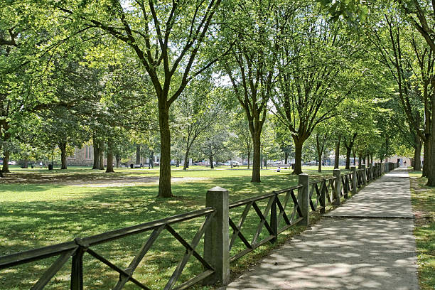 A sidewalk with a fence at New Haven green