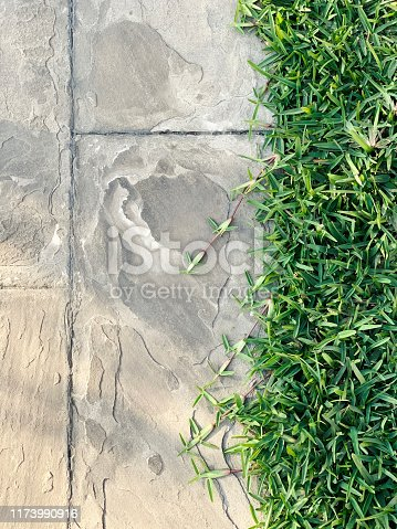 Sidewalk with grass on the side during sunset