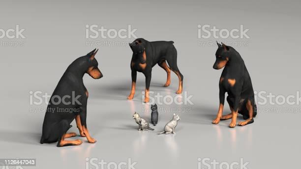 Siege from three dobermans to three kittend in middle 3d illustration picture id1126447043?b=1&k=6&m=1126447043&s=612x612&h=ohzzx1xltw4mxpedarmujxeugandljw4db hadcksp8=