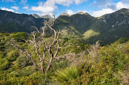 Sierra Blanca. Striations with the Sierra de las Nieves National Park, Malaga. Spain