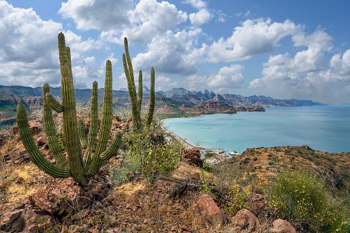 Coastal mountain range rising abruptly out of the Sea of Cortez south of Loreto. Baja California Sur, Mexico.