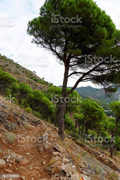 Sierra de mijas mountain range in andalusia spain picture id924705804?b=1&k=6&m=924705804&s=612x612&h=0yo31xpcwmgp1srolczpjdkmexll7pge5a6mejm xam=