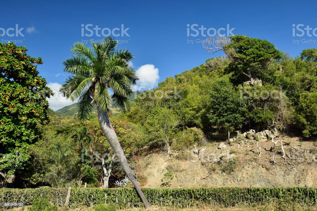 Sierra Maestra National Park on Cuba stock photo