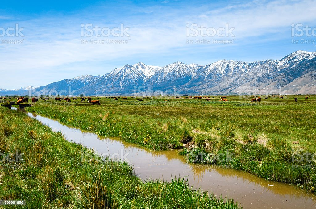 Sierra Nevada mountains stock photo